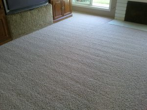 carpet-cleaning-los-angeles1.jpg